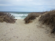 Coast Guard Beach, Eastham MA