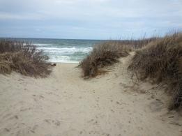 Coast Guard Beach, Eastham MA
