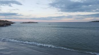 Wingaersheek Beach, Gloucester MA
